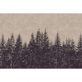 Fototapety black forest 1 DD110511 Livingwalls Walls by Patel