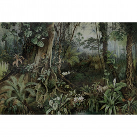 Fototapety jungle 2 DD110696 Livingwalls Walls by Patel