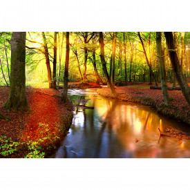 Fototapety ForestStream DD114972 A.S. Création XXL 5